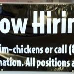 Slim Chickens Banner